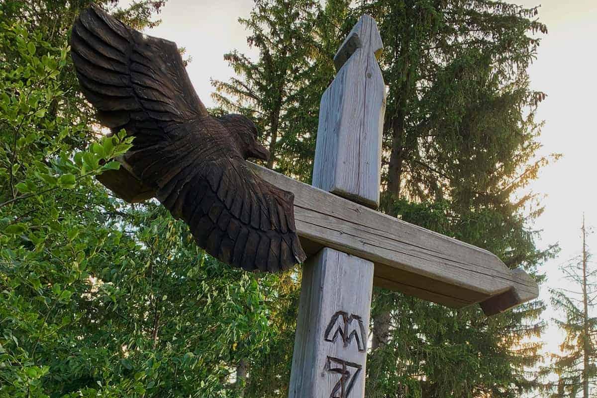 Adler am Gipfelkreuz in Wurzelrudis Erlebniswelt ©WR